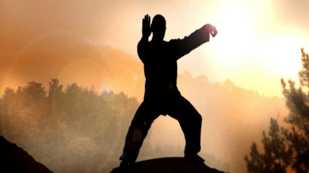 Stage de Tai Chi Chuan : forme de YANG CHENG FU